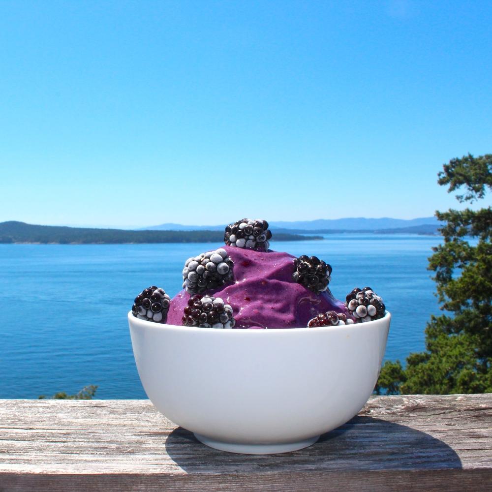 Blackberry Protein Nice Cream - Vegan 3